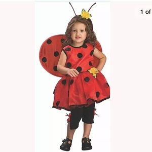 🆕 LADYBUG Child Costume SMALL (4-6) Dress Outfit